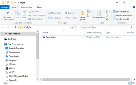 Explorador de Arquivos ou Windows Explorer